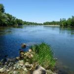 biodiversité aquatique